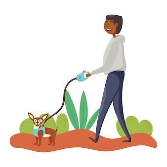 Guy walks chihuahua dog leash