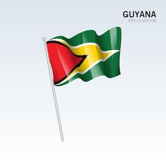 회색에 고립 된 깃발을 흔들며 가이아나