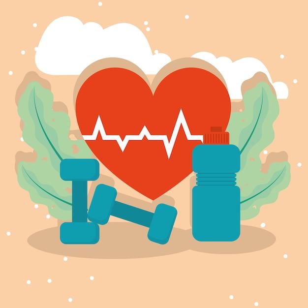 체육관 병 및 심장