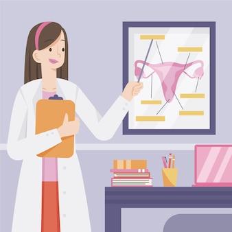 Gynecologist explaining reproductive system