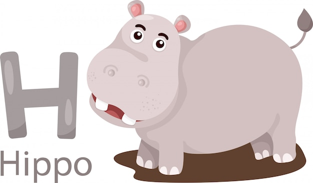 Иллюстрация изолированного алфавита животных h для hippo
