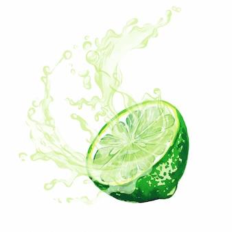 ジュースのスプラッシュと柑橘系の果物の半分