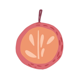 나뭇가지와 흰색 배경에 고립 된 잎 없이 절반 빨간 사과. 낙서 스타일 벡터 일러스트 레이 션에 그려진 씨앗 손으로 사과.