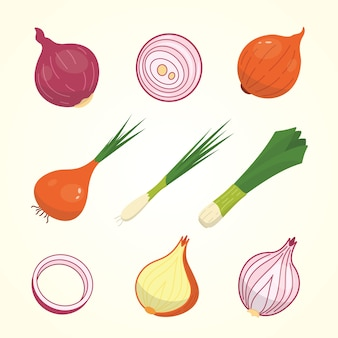 Half, slice and whole onion ripe. yellow, red and spring onions vegetable  set .