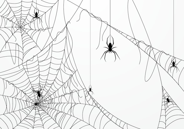 Halloween background decorated with spider web