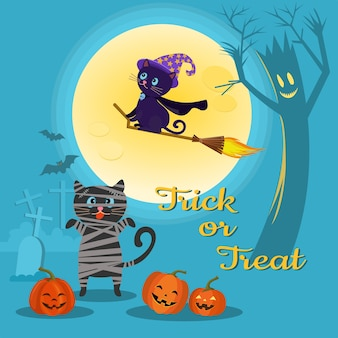 Halloween background with cat and pumpkin.