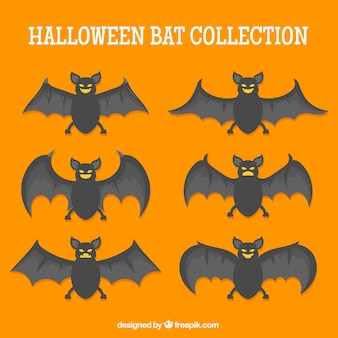 Halloween bat collection