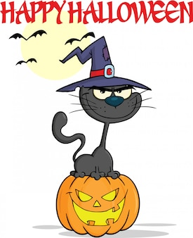 Halloween black cat with a witch hat on pumpkin cartoon