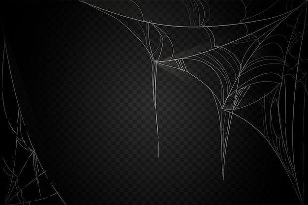 Halloween cobweb background theme