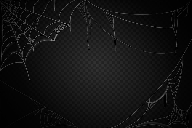 Halloween cobweb background