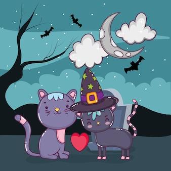 Halloween cute cat cartoons