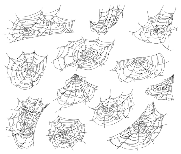 Halloween isolated spiderweb and cobweb nets set