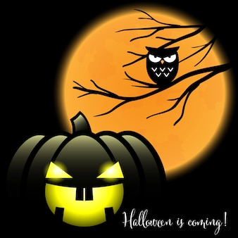 A halloween jack o lantern with halloween is coming text.
