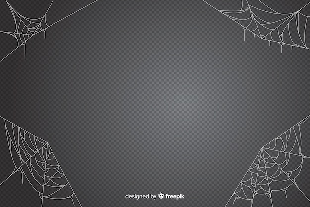 Halloween spider web backdrop