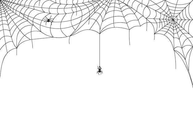 Halloween spider web border, spooky cobwebs with hanging spiders. scary webs frame decoration, spiderweb silhouette vector background. poisonous horror creature or insect for holiday