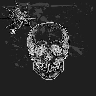 ハロウィーンの不気味な頭蓋骨のイラスト