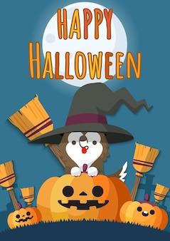 Halloween witch dog on jack-o-lantern pumpkins.