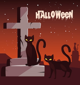 Halloween with cats in cemetery