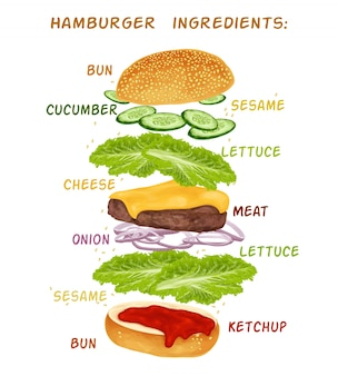 Hamburguer ingredients design