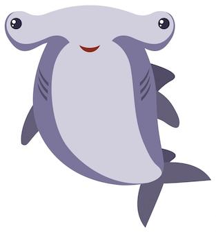 흰색 배경에 귀상어 상어
