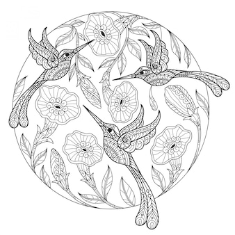 Hammingbird. ручной обращается эскиз иллюстрации для взрослых книжка-раскраска