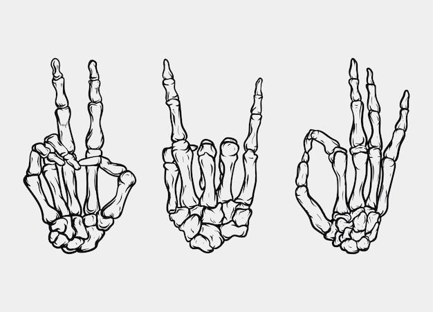 손 뼈 세트
