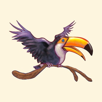 Hand dranw toucan bird isolated