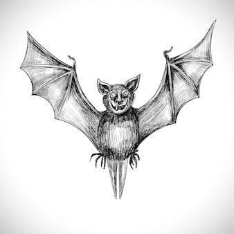 손 그리기 박쥐 스케치 디자인