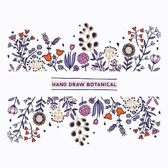 手描きの植物、スケッチ。
