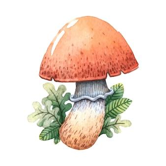 Hand draw character mushroom.