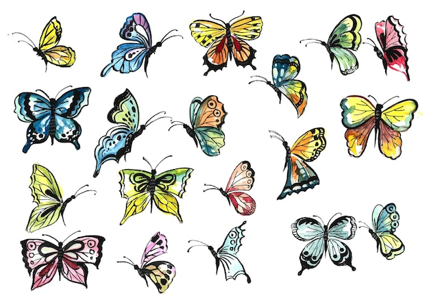Hand draw collection of pretty colorful butterflies watercolor design