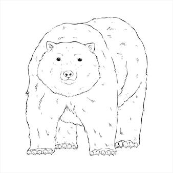 흰색 배경에 손으로 그리는 귀여운 북극곰