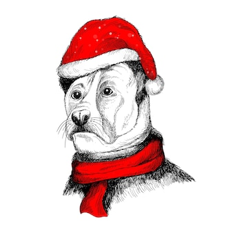 Hand draw dog in santa hat for merry christmas card