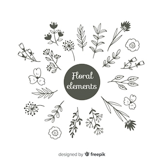 Hand draw floral colorless decoration elements