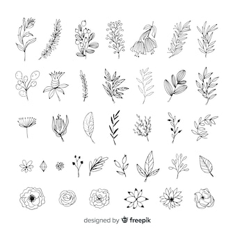 Hand draw floral decoration elements