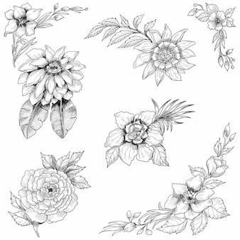 Hand draw floral sketch set design