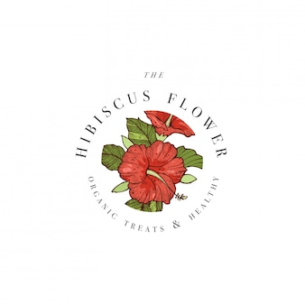 Hand draw  hibiscus flowers logo illustration. floral wreath. botanical floral emblem with typography on white background.