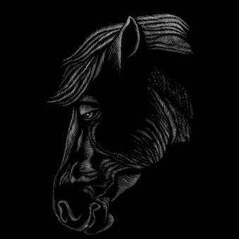 Hand draw horse head illustration