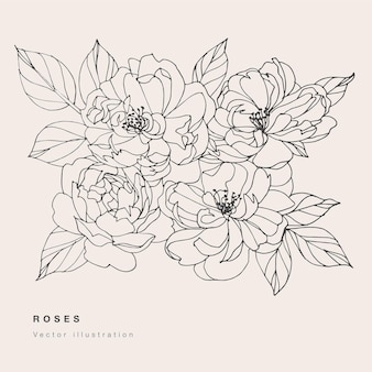 手描きベクトル茶バラの花イラスト。花の花輪。白い背景の上の植物の花カード。