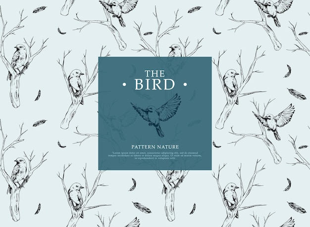 Hand drawing bird in branches pattern template for background or packaging