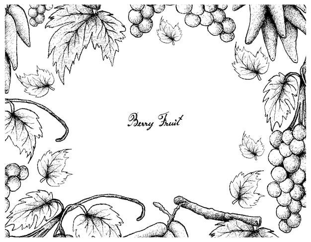 Hand drawing frame of assyrtiko grapes and elongated grapes