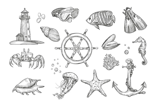 Hand drawing nautical elements illustration collection