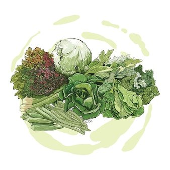 Рука рисунок зеленых овощей
