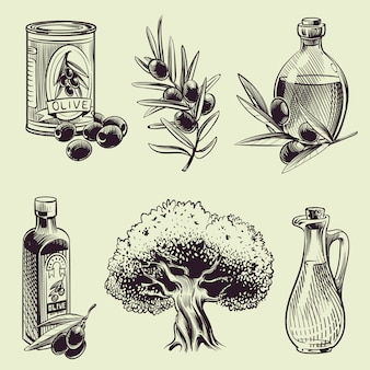 Hand drawing olives. vintage olive branches oil bottles and can.