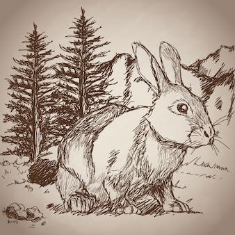 Hand drawing rabbit landscape vintage