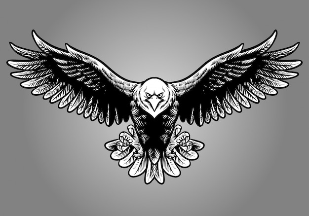 Hand drawing style of eagle