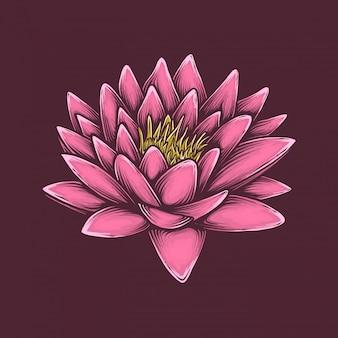 手描きのヴィンテージの蓮の花のベクトル図