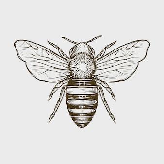 手描きのビンテージモノクロ蜂ベクトルイラスト