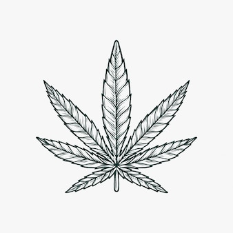 Рука рисунок старинные монохромный марихуаны векторная иллюстрация