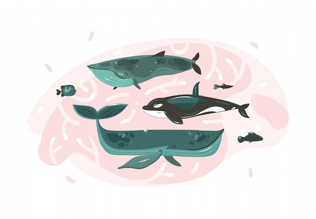 Hand drawn  abstract cartoon graphic summer time underwater illustrations collection set with coral reefs and beauty big whales characters isolated on white background